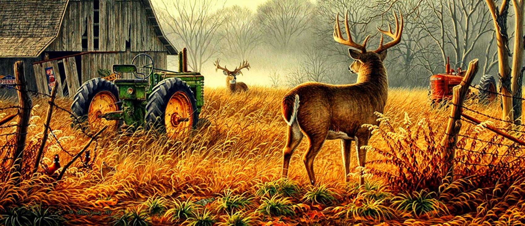 Farming Simulator 19 with Seasons? Ideas – Chapter #5 - Farming
