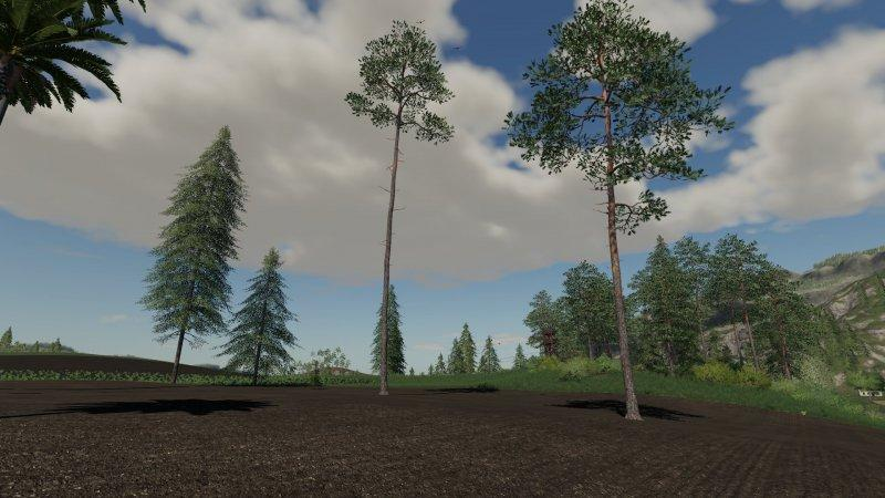 bäume ls19